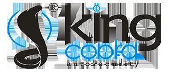 Logo | Kingcobra Electronics - kcaralarm.com
